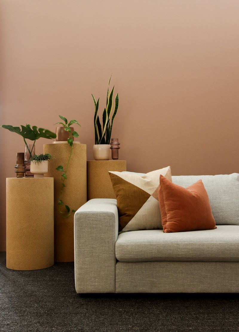 orange wall find a sofa that fits white sofa