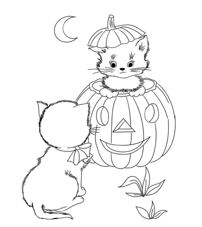 cat inside pumpkin halloween coloring pages