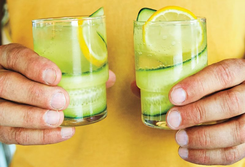 cucumber slices in two glasses gin cocktail recipes