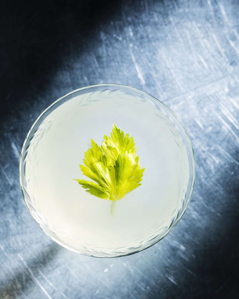 gin mixed drinks gimlet in glass