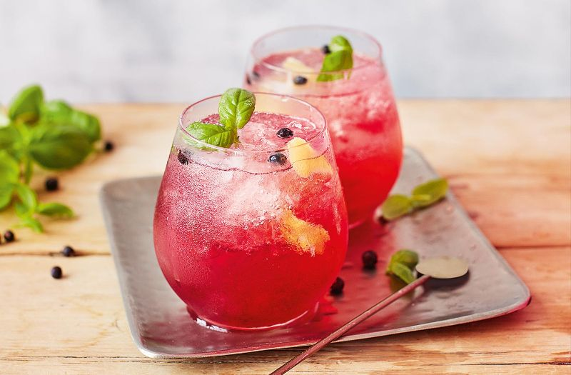 two glasses gin drink recipes with cranberries